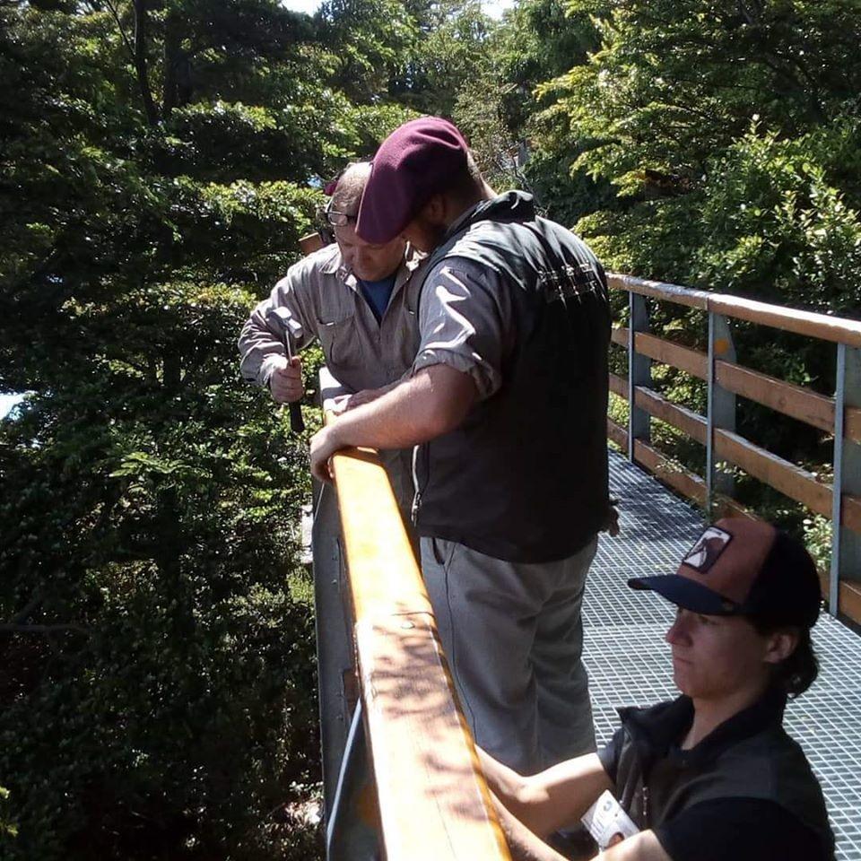 Temporada alta de voluntarios en el Parque Nacional