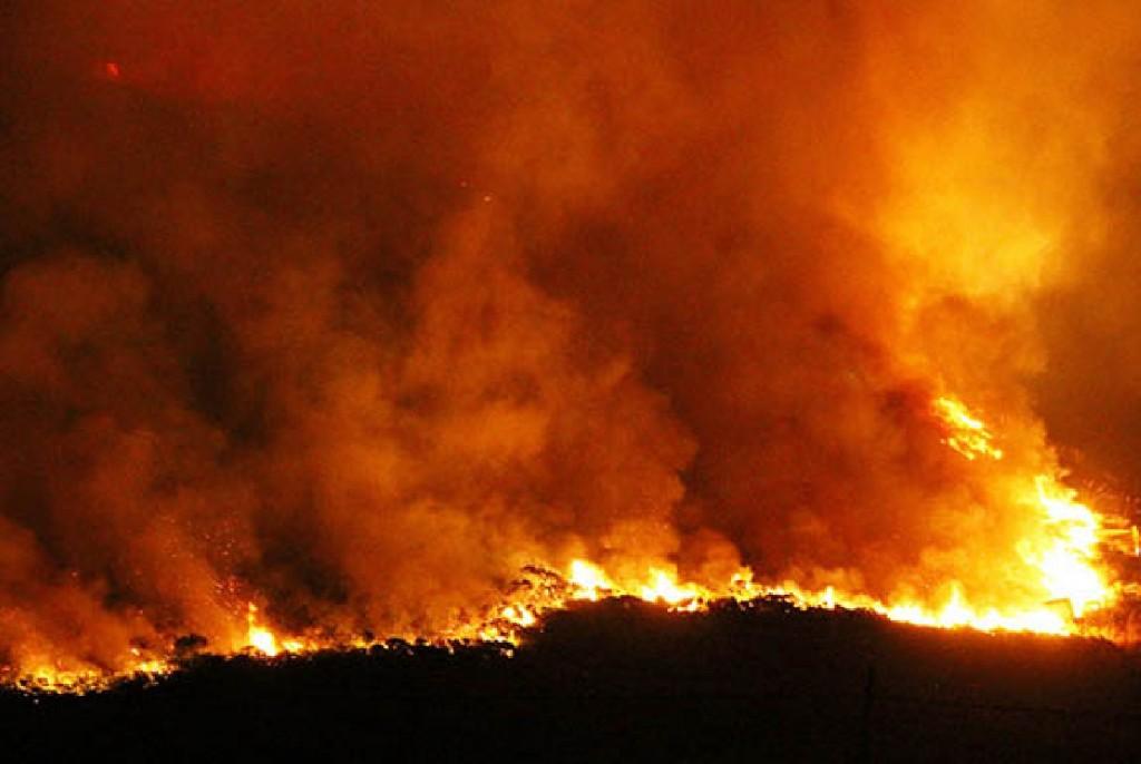 Brigadistas de El Calafate acuden a un incendio de campos