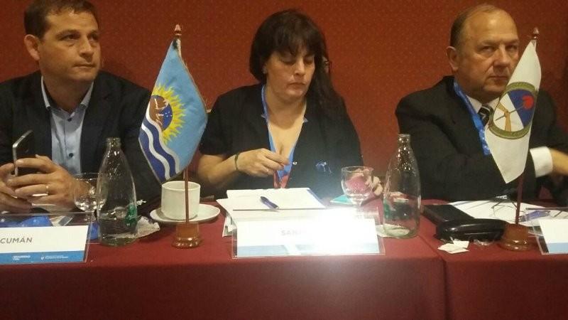 El Consejo Federal de Seguridad Vial se reunirá en El Calafate