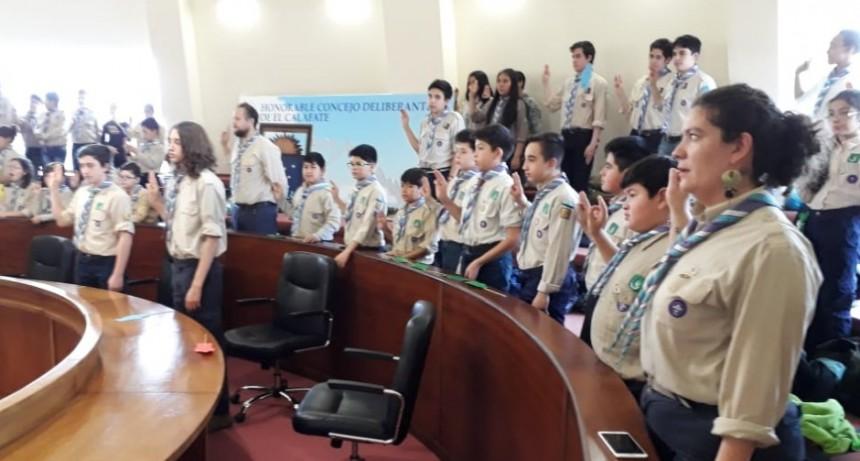 Scouts votaron proyectos en el Concejo Deliberante.