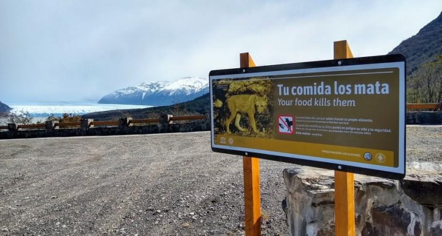 """Campaña """"Tu Comida Los Mata"""". Instalan carteles en lugares clave"""