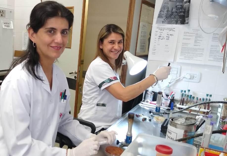 El Laboratorio de Microbiología del SAMIC logró el 100% en evaluación de calidad
