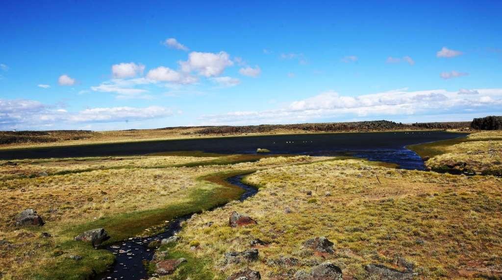 Santa Cruz busca prohibir provisoriamente la creación de nuevas áreas protegidas