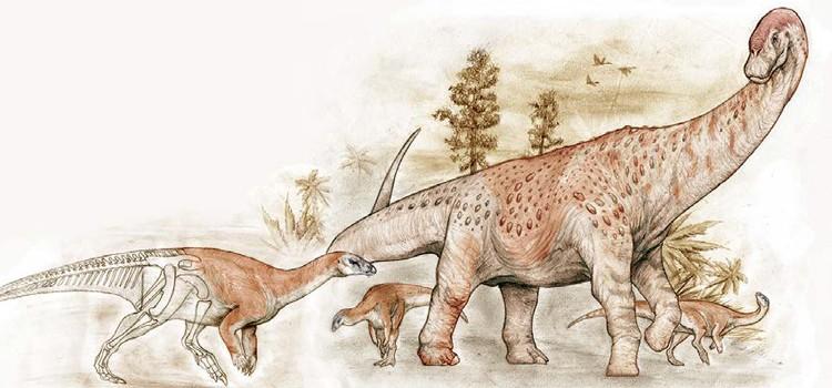Oficializaron hallazgo de fósiles de dinosaurios cerca de El Calafate