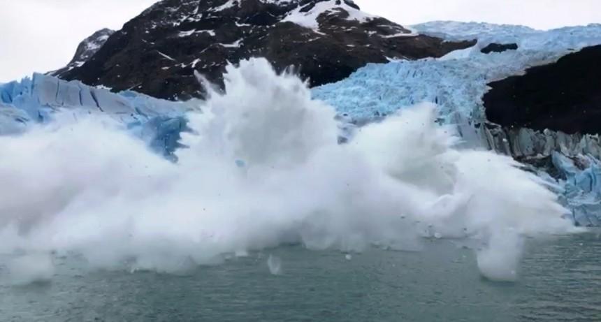VIDEO. De la fascinación al susto en un segundo
